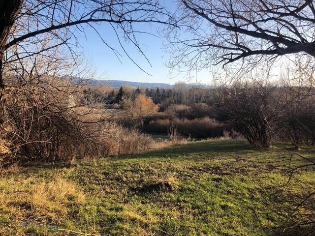 NHN Lot 3 Sourdough Road, Bozeman, MT 59715 (MLS #356919) :: Black Diamond Montana