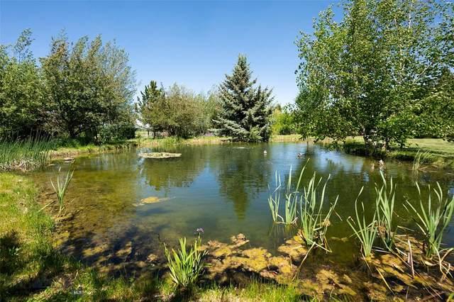 5520 Sourdough Road, Bozeman, MT 59715 (MLS #356962) :: Hart Real Estate Solutions
