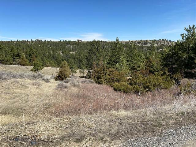 93 Haystack Coulee Road, Reed Point, MT 59069 (MLS #356999) :: Black Diamond Montana