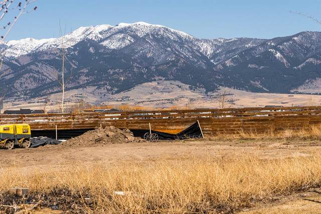 TBD Ryun Sun Way, Bozeman, MT 59718 (MLS #357030) :: L&K Real Estate