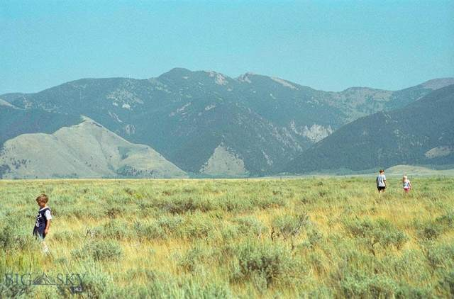 Lot 2 Madison River Ranches, Cameron, MT 59720 (MLS #357114) :: Coldwell Banker Distinctive Properties
