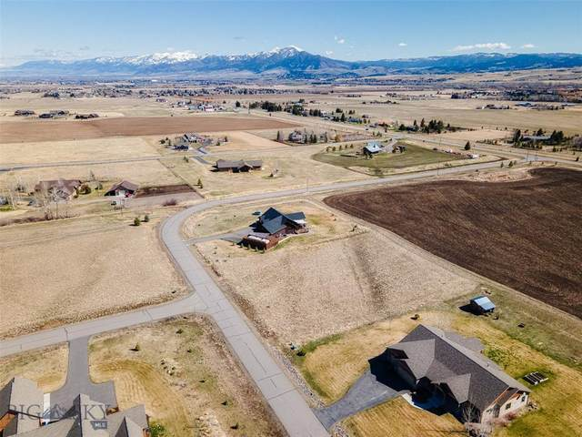 256 Balsam Drive, Bozeman, MT 59718 (MLS #357170) :: L&K Real Estate