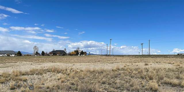 Lot 41 Hoot Owl Court, Dillon, MT 59725 (MLS #357309) :: Hart Real Estate Solutions