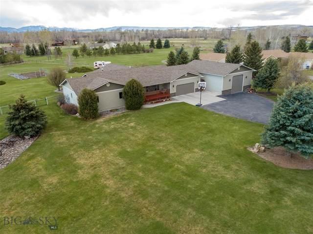 230 Comfort Lane, Bozeman, MT 59718 (MLS #357447) :: Hart Real Estate Solutions