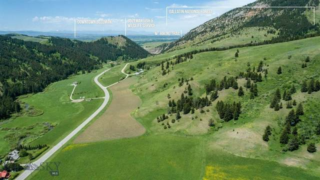 TBD Mayfield Road, Bozeman, MT 59715 (MLS #357462) :: Black Diamond Montana