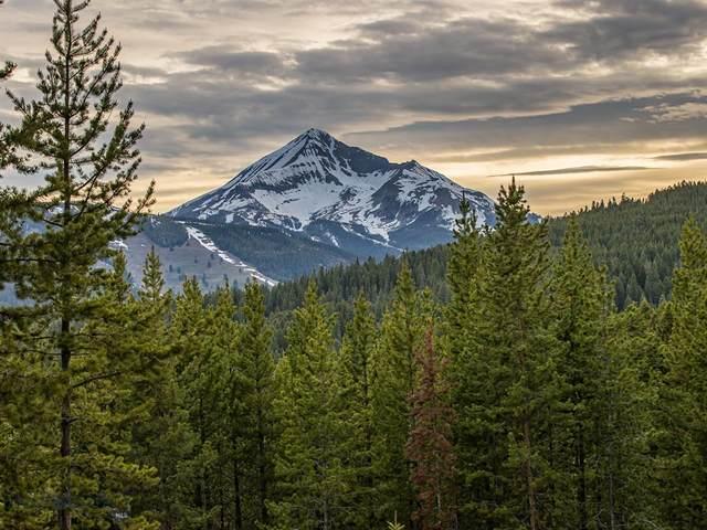 TBD North Fork Road, Big Sky, MT 59716 (MLS #357739) :: Black Diamond Montana