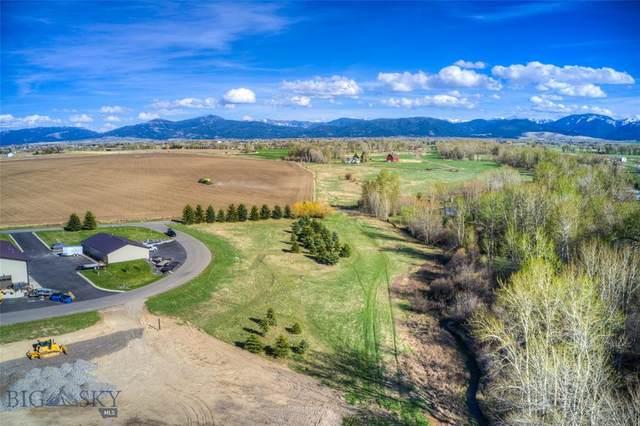TBD Wildcat Way, Bozeman, MT 59718 (MLS #357744) :: L&K Real Estate