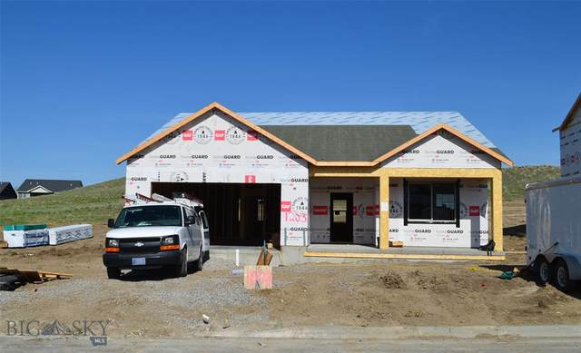 1203 Sweetgrass Lane, Livingston, MT 59047 (MLS #357826) :: Hart Real Estate Solutions
