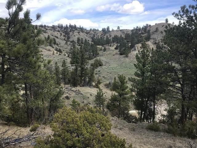 TBD Dry Creek Road, Molt, MT 59057 (MLS #357978) :: Coldwell Banker Distinctive Properties