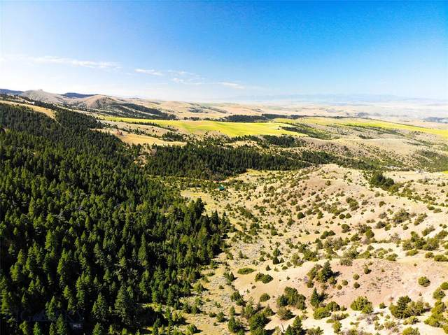 Lot 276 Lone Wolf, Three Forks, MT 59752 (MLS #358116) :: Hart Real Estate Solutions