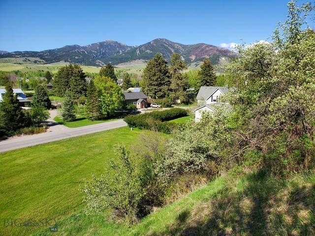 1234 Hillside Lane, Bozeman, MT 58715 (MLS #358172) :: Coldwell Banker Distinctive Properties