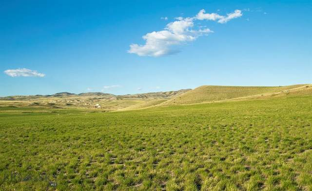 Lot 80 Wheatland Meadows Drive, Three Forks, MT 59752 (MLS #358190) :: Hart Real Estate Solutions