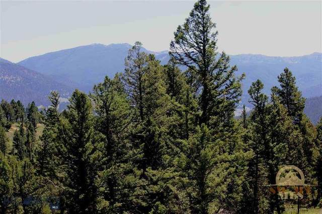 Lot 1 Appaloosa Trail, Big Sky, MT 59716 (MLS #358245) :: Hart Real Estate Solutions