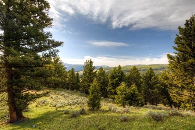 TBD Appaloosa Trail, Big Sky, MT 59716 (MLS #358262) :: Black Diamond Montana