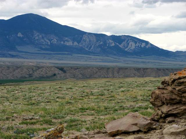 145 Overland Trail, Clark, WY 82435 (MLS #359598) :: L&K Real Estate