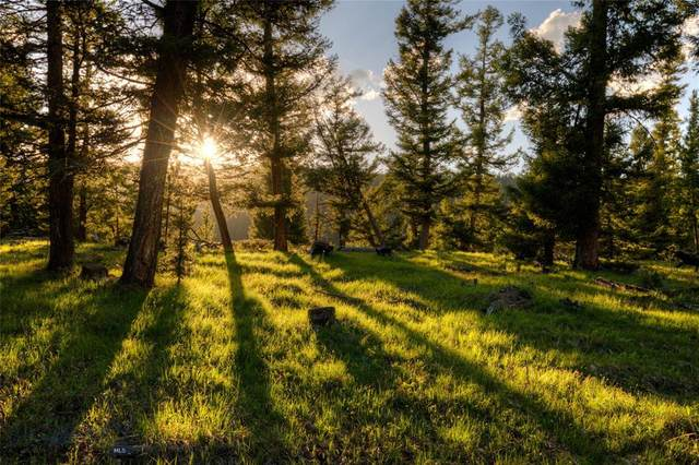 301 Outlook Trail, Big Sky, MT 59716 (MLS #359687) :: Hart Real Estate Solutions