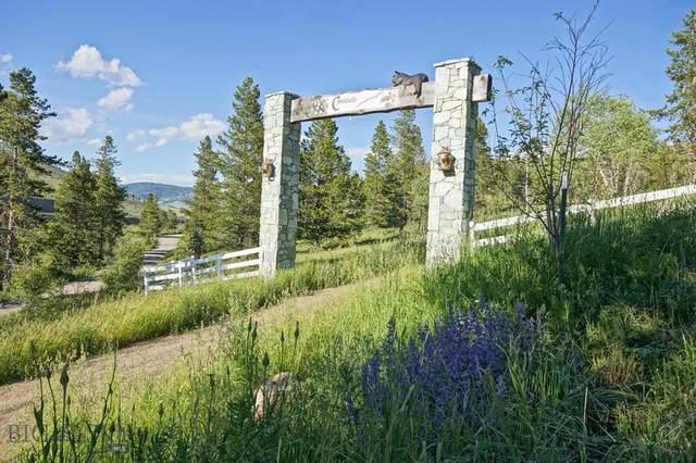 770 Mountain Moose Road, Bozeman, MT 59715 (MLS #359713) :: Black Diamond Montana