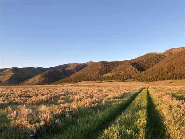 LotA 57 Sheep Creek, Cameron, MT 59720 (MLS #359778) :: Montana Life Real Estate
