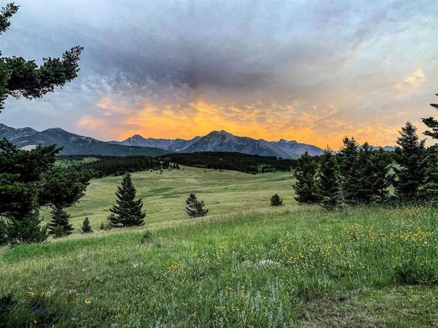 TBD Above Paradise Trail, Livingston, MT 59047 (MLS #359780) :: Hart Real Estate Solutions