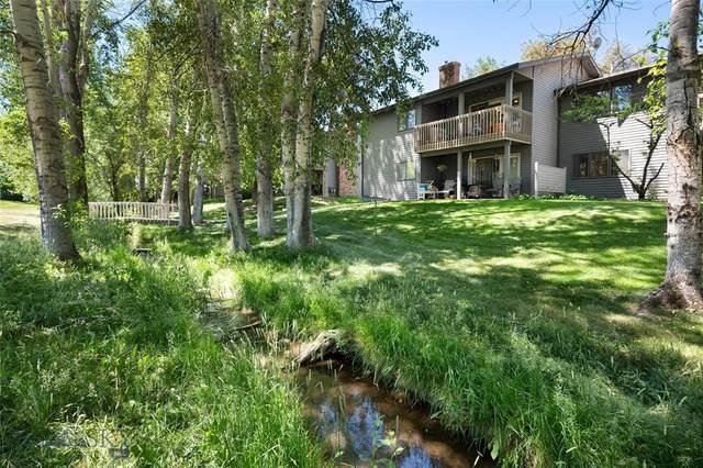 2200 W Dickerson Street #29, Bozeman, MT 59718 (MLS #359789) :: Carr Montana Real Estate