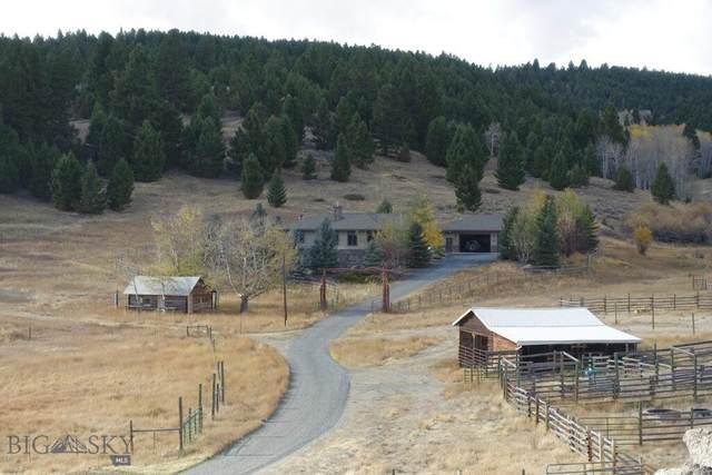 425 Two Bit Lane, Butte, MT 59701 (MLS #360188) :: L&K Real Estate