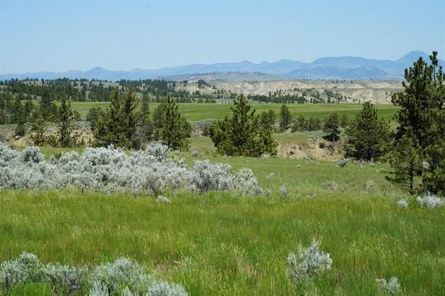 43 Zy Brown Ranch Road, Big Sandy, MT 59520 (MLS #360321) :: Montana Life Real Estate