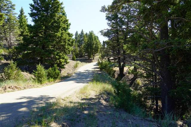 NHN Friend Spring, Whitehall, MT 59759 (MLS #360337) :: Carr Montana Real Estate