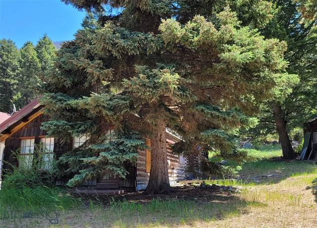 1153 So. Boulder Rd, Cardwell, MT 59721 (MLS #360383) :: Carr Montana Real Estate