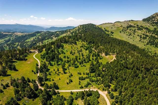 TBD Skyport Heights Road, Livingston, MT 59047 (MLS #360443) :: Carr Montana Real Estate