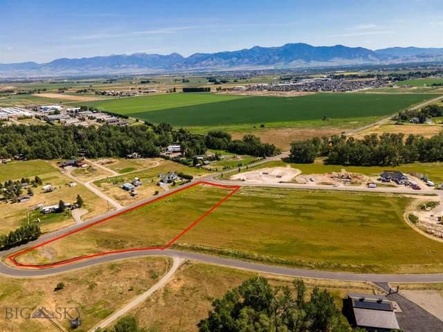 15 Breeden Drive, Bozeman, MT 59718 (MLS #360452) :: Carr Montana Real Estate