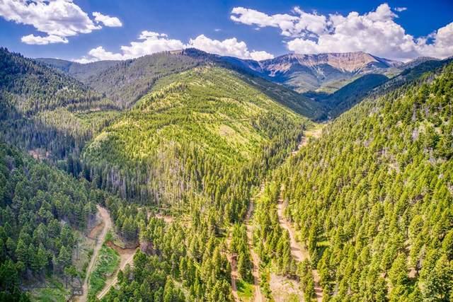 Lot 39 Alder Gulch Rd, Alder, MT 59710 (MLS #360498) :: Black Diamond Montana