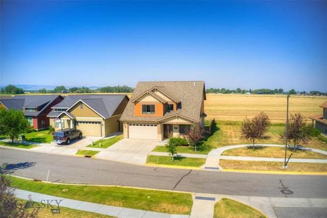 1125 Advance Drive, Bozeman, MT 59718 (MLS #360580) :: L&K Real Estate