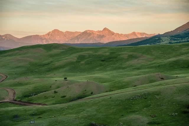 TBD Frontage Road, Livingston, MT 59047 (MLS #360581) :: Black Diamond Montana