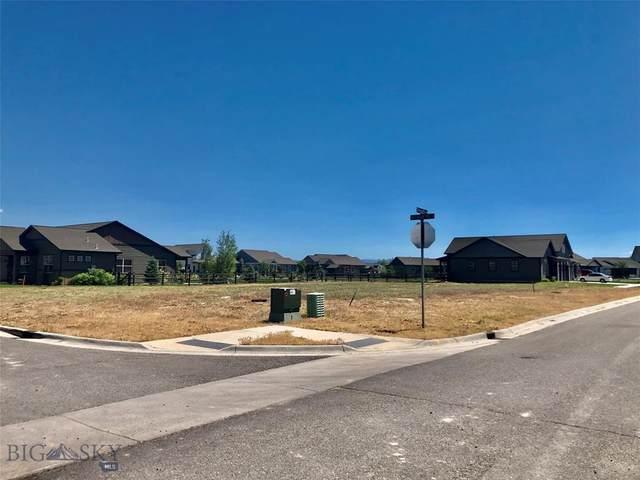 TBD E Shade Tree Lane, Manhattan, MT 59741 (MLS #360857) :: Montana Life Real Estate