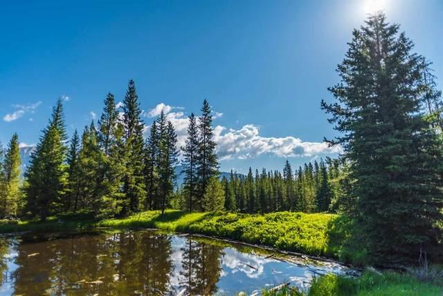 207 Outlook Trail, Big Sky, MT 59716 (MLS #360970) :: Black Diamond Montana