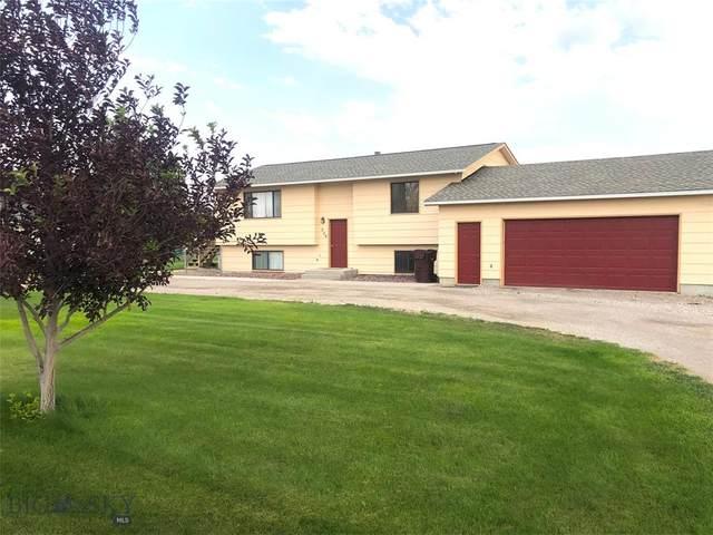 229 Antelope Drive, Dillon, MT 59725 (MLS #360999) :: Carr Montana Real Estate