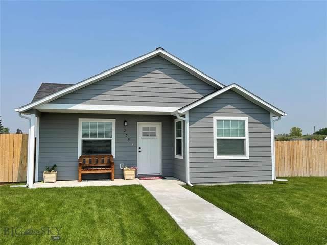255 Johnson Avenue, Dillon, MT 59725 (MLS #361002) :: Carr Montana Real Estate
