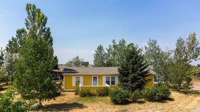 1025 Ketchikan, Belgrade, MT 59714 (MLS #361114) :: L&K Real Estate