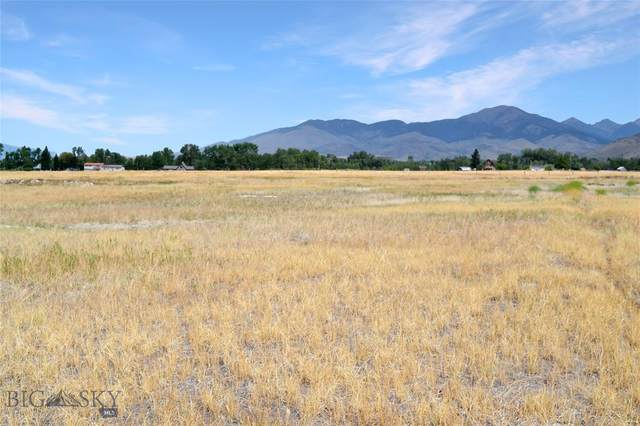 TBD Colette's Way, Sheridan, MT 59749 (MLS #361144) :: Carr Montana Real Estate