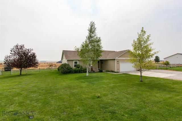 55 Sautter Lane, Townsend, MT 59644 (MLS #361176) :: Montana Life Real Estate