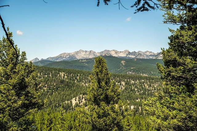 Lot 58 Sweetroot Fork, Big Sky, MT 59716 (MLS #361446) :: Black Diamond Montana