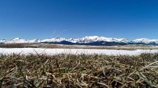 NHN Highway 2, East Glacier, MT 59434 (MLS #361735) :: Carr Montana Real Estate