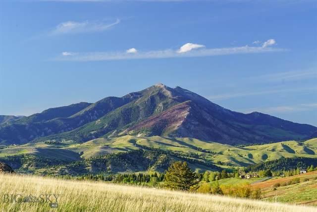 370 Mcgee, Bozeman, MT 59715 (MLS #361808) :: Montana Home Team