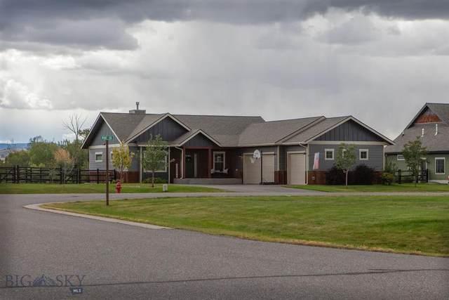 70 Mint Trail, Bozeman, MT 59718 (MLS #362237) :: Carr Montana Real Estate