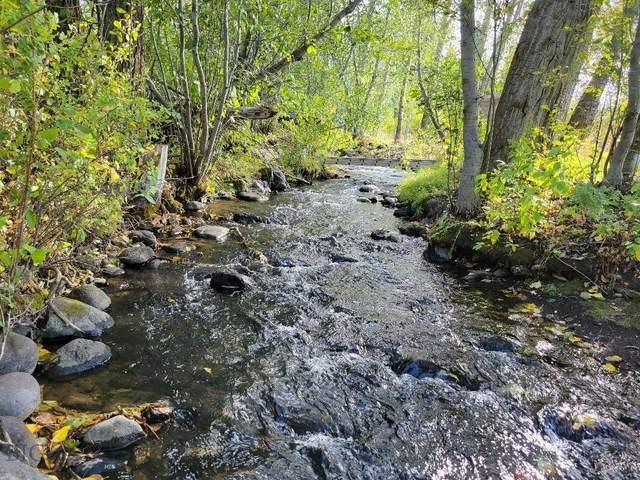 NHN Hyalite Canyon Road, Bozeman, MT 59715 (MLS #362535) :: Montana Mountain Home, LLC
