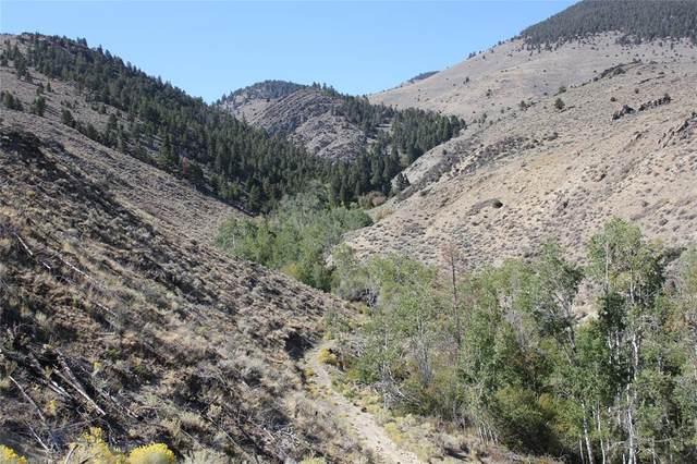 TBD Lost Creek Road, Glen, MT 59732 (MLS #362563) :: Black Diamond Montana