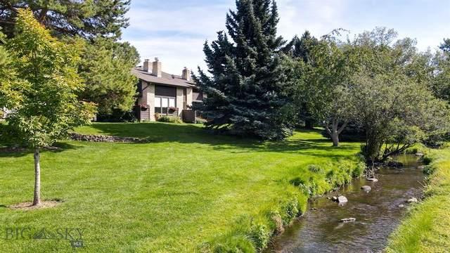 1631 S Black Avenue, Bozeman, MT 59715 (MLS #362587) :: Montana Mountain Home, LLC