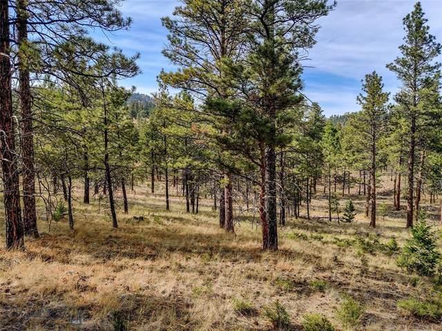 TBD Black Sandy Loop, Helena, MT 59602 (MLS #362666) :: Montana Life Real Estate