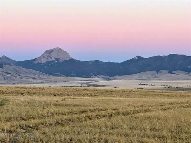 TBD Stagecoach Trail, Ennis, MT 59729 (MLS #362676) :: Montana Mountain Home, LLC