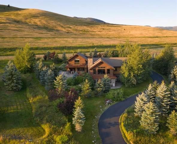 389 Derek Way, Bozeman, MT 59718 (MLS #362732) :: Carr Montana Real Estate
